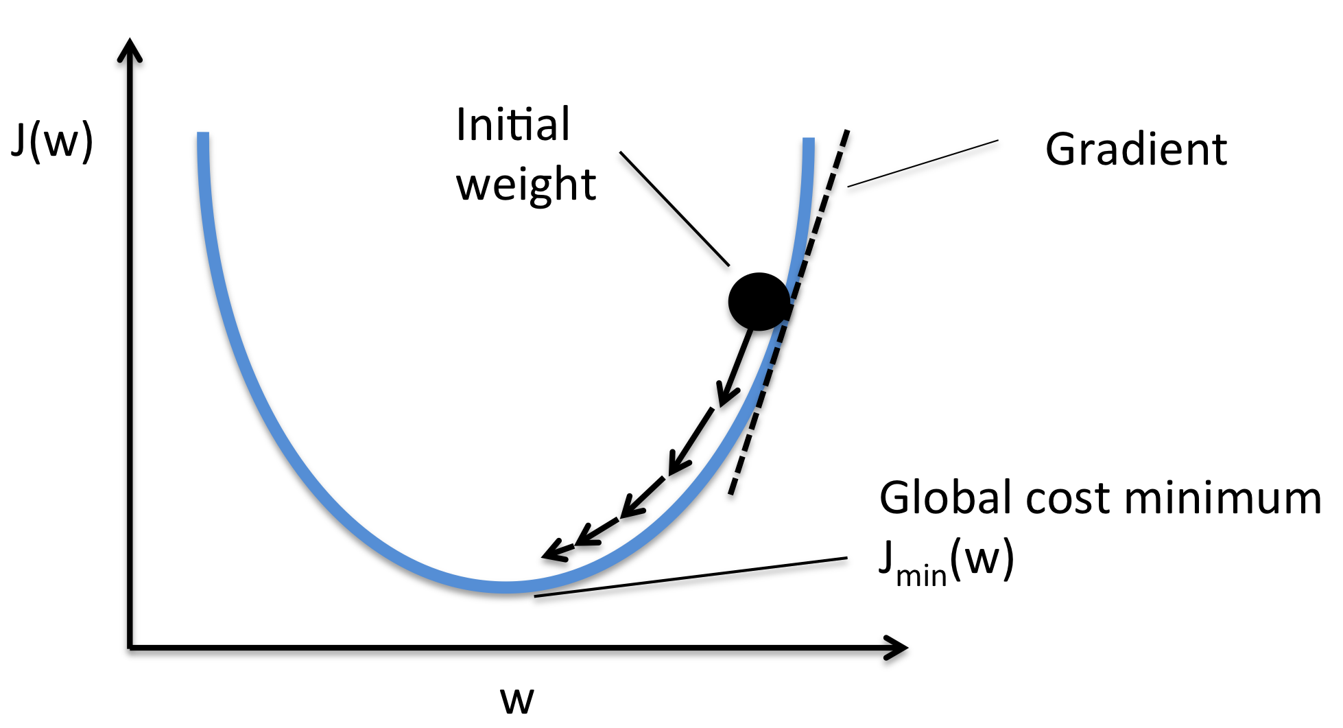 initial weights neural networks