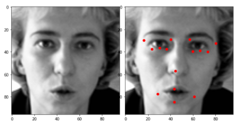 preprocessed data | face key-point recognition