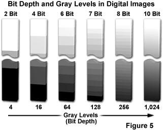 grey level in digital images