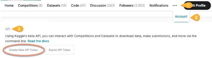 Kaggle Datasets into Google Colab